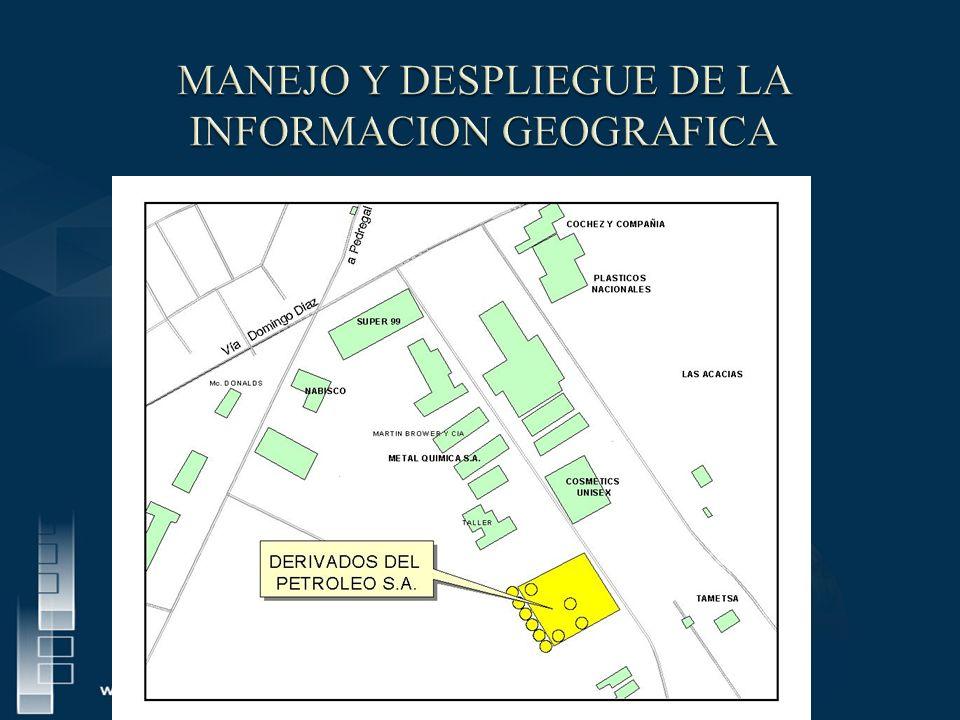 MANEJO Y DESPLIEGUE DE LA INFORMACION GEOGRAFICA
