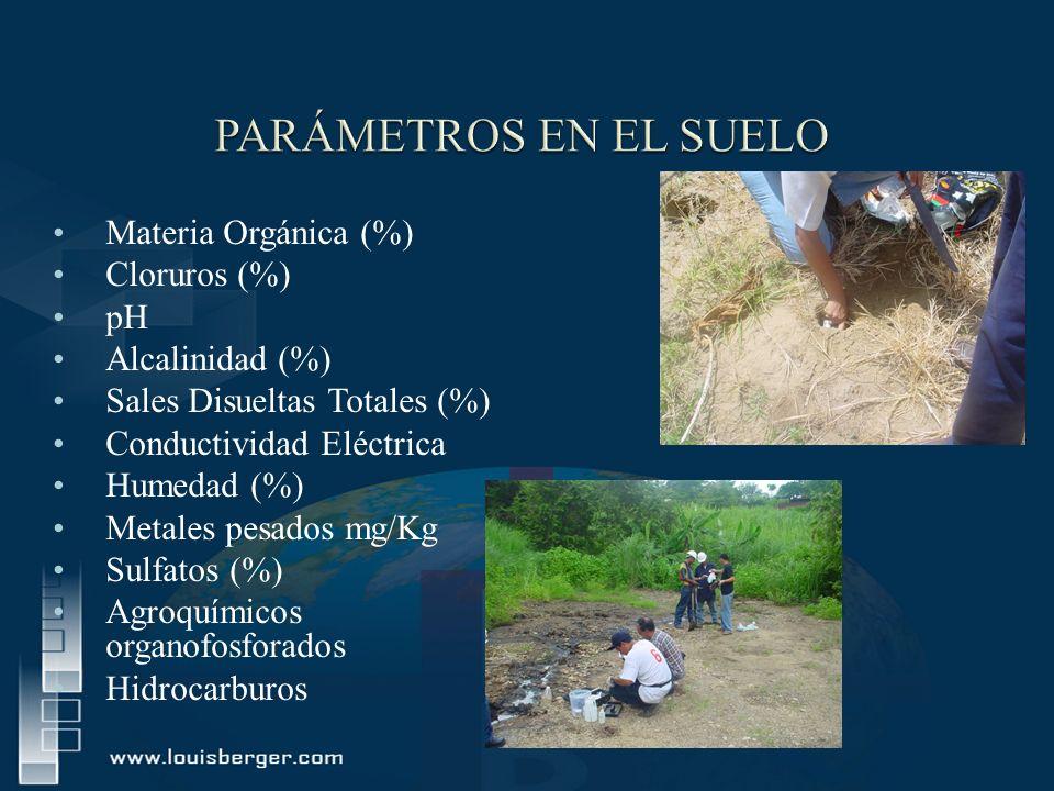 PARÁMETROS EN EL SUELO Materia Orgánica (%) Cloruros (%) pH