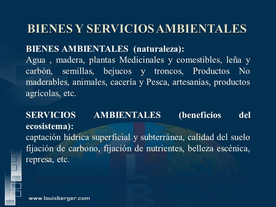 BIENES Y SERVICIOS AMBIENTALES