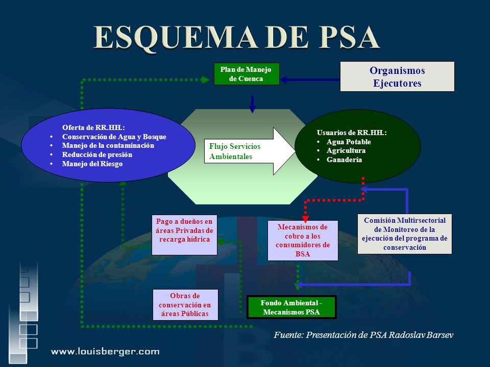 ESQUEMA DE PSA Organismos Ejecutores