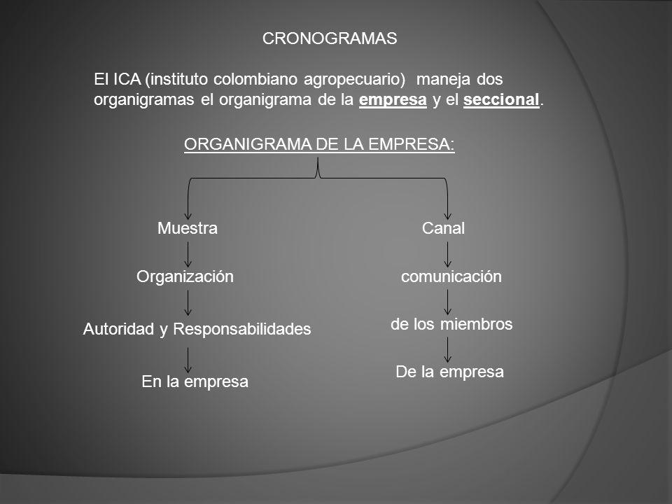 CRONOGRAMAS El ICA (instituto colombiano agropecuario) maneja dos organigramas el organigrama de la empresa y el seccional.
