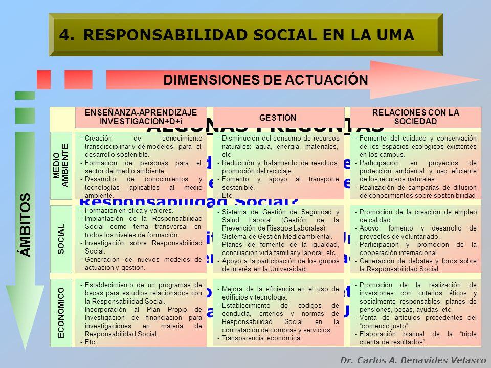 DIMENSIONES DE ACTUACIÓN