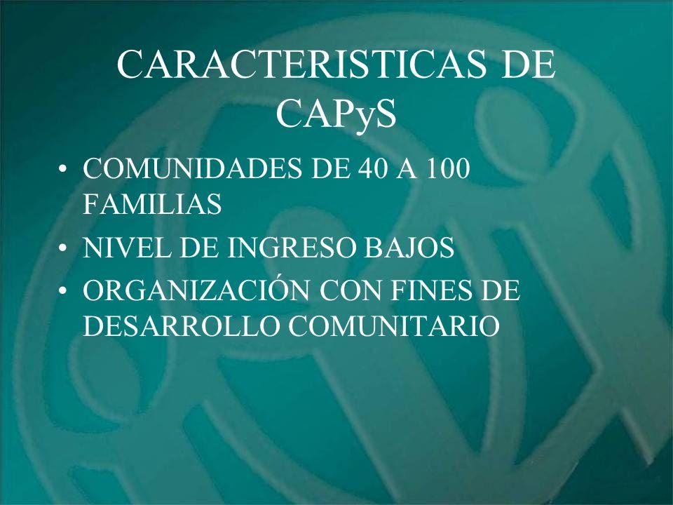 CARACTERISTICAS DE CAPyS