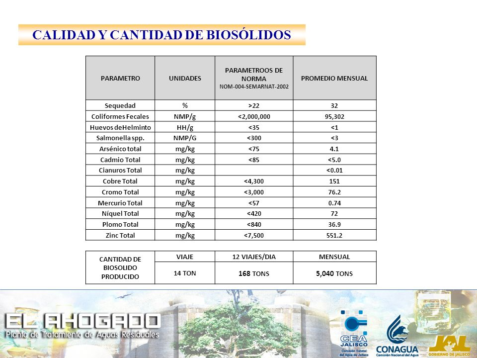 CALIDAD Y CANTIDAD DE BIOSÓLIDOS