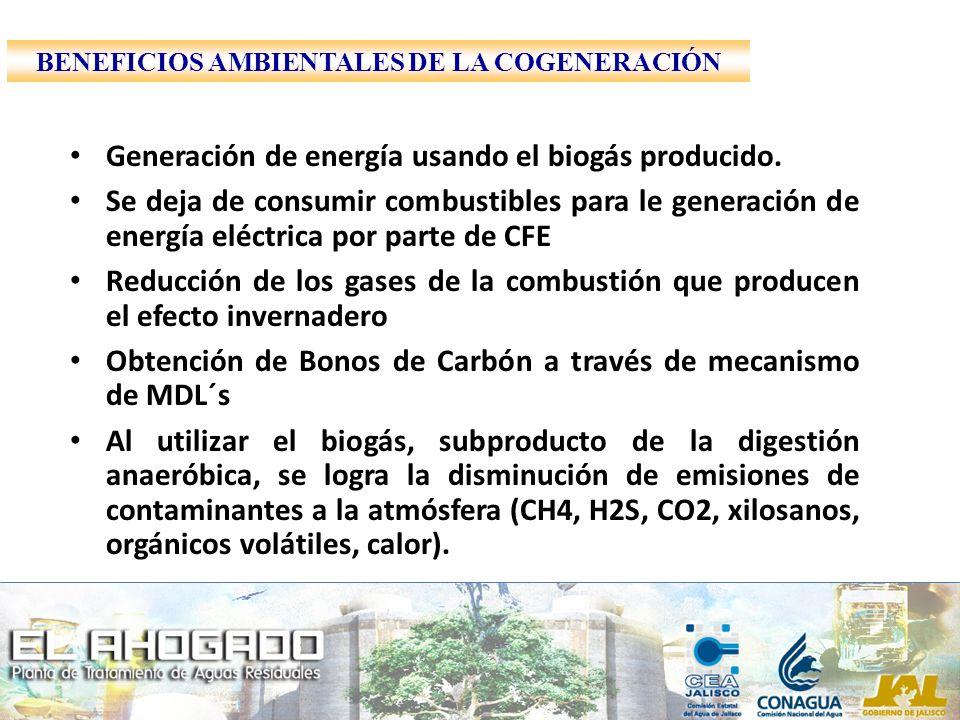 BENEFICIOS AMBIENTALES DE LA COGENERACIÓN