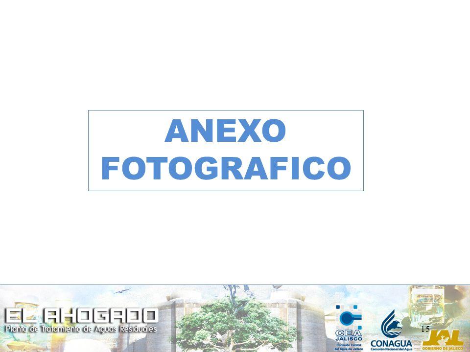 ANEXO FOTOGRAFICO 15 15