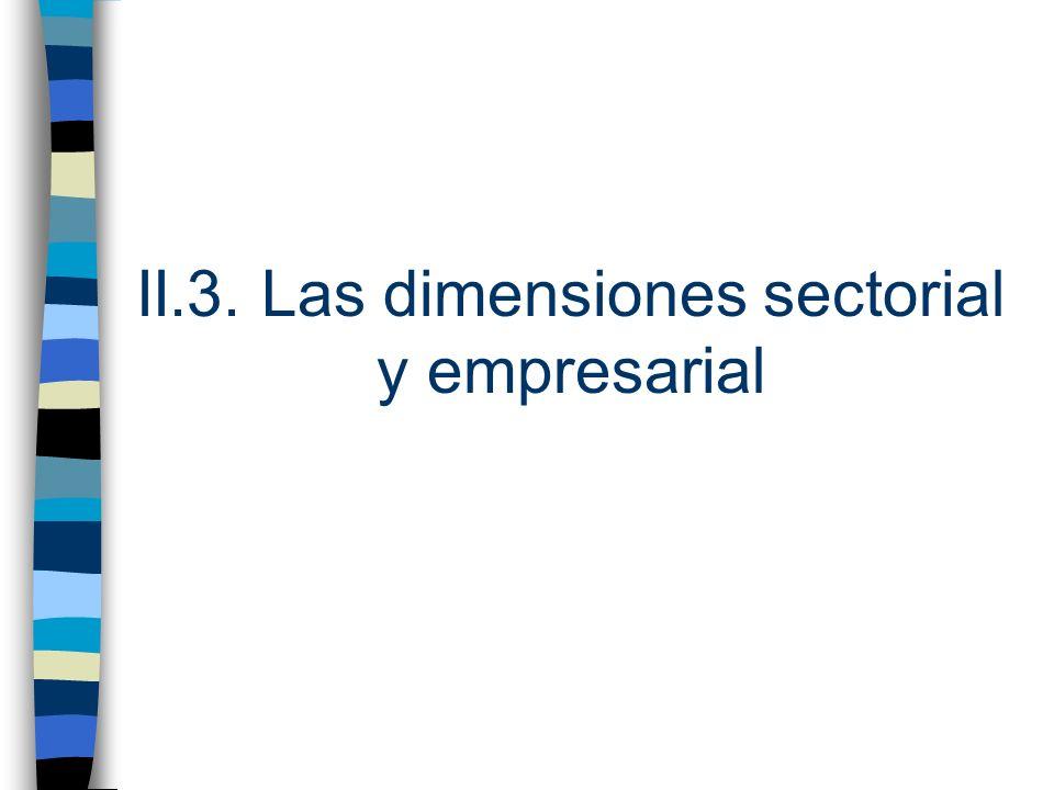 II.3. Las dimensiones sectorial y empresarial
