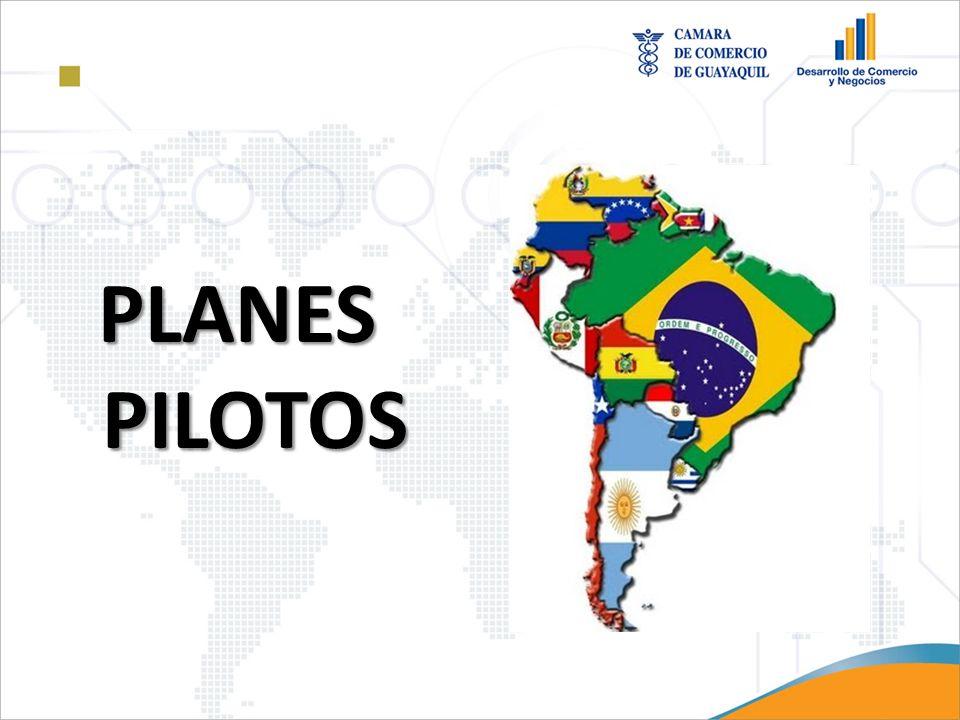 PLANES PILOTOS