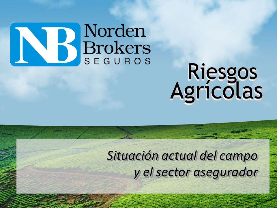 Riesgos Agrícolas Situación actual del campo y el sector asegurador