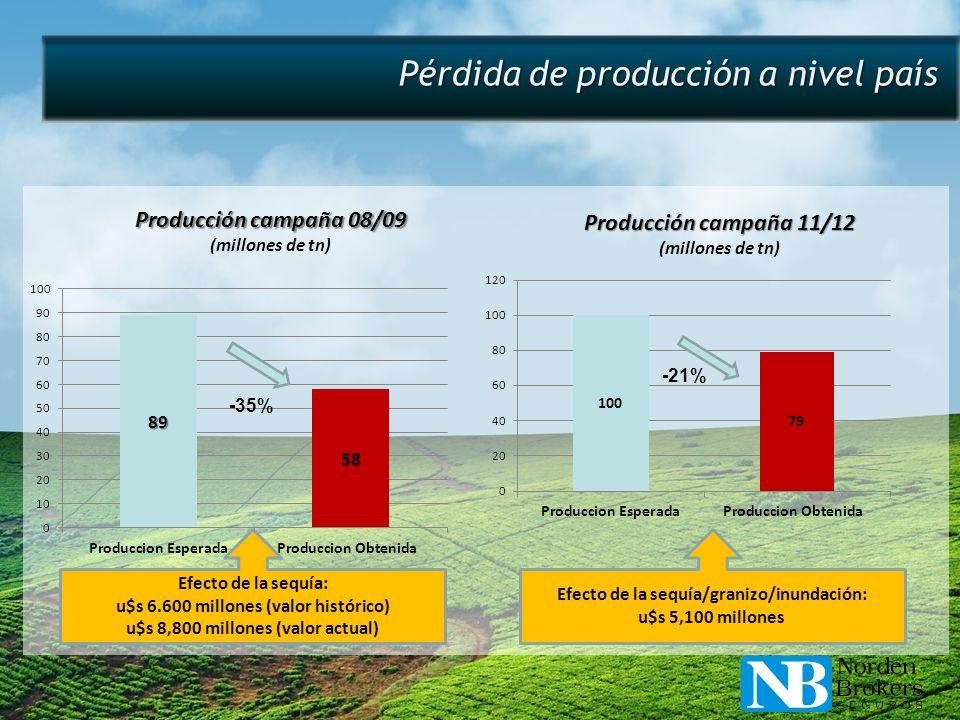 Pérdida de producción a nivel país