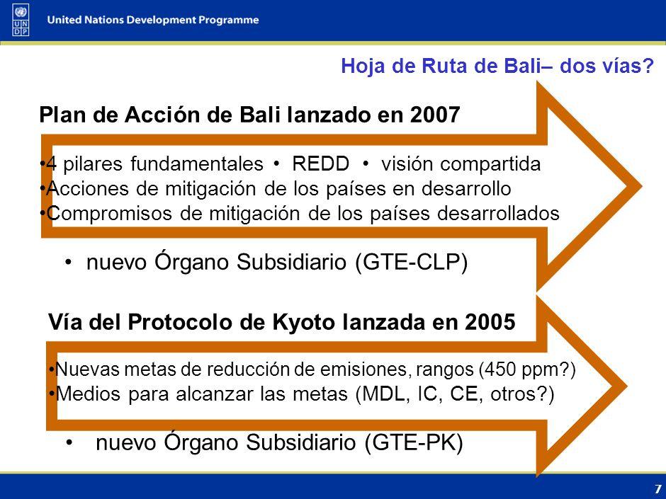 ADAPTACIÓN PLAN DE ACCIÓN DE BALI PILAR FUNDAMENTAL