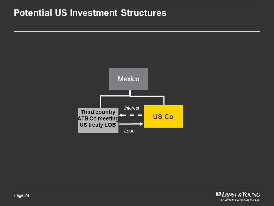 Potential US Investment Structures
