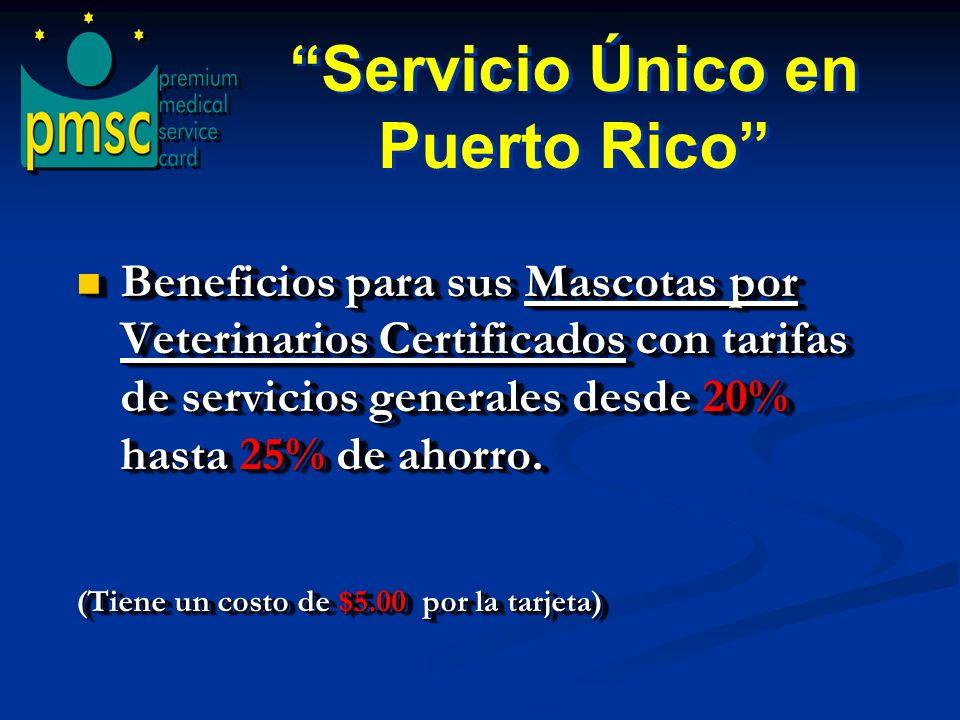 Servicio Único en Puerto Rico