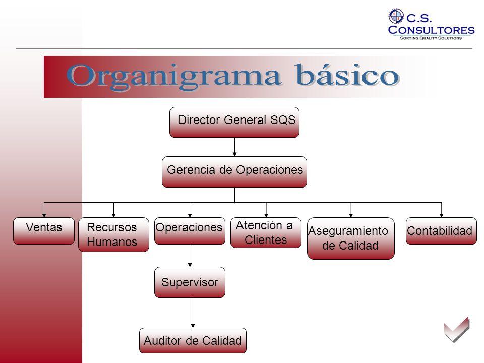 Organigrama básico a Director General SQS Gerencia de Operaciones