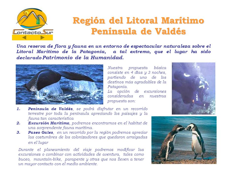 Región del Litoral Marítimo Península de Valdés