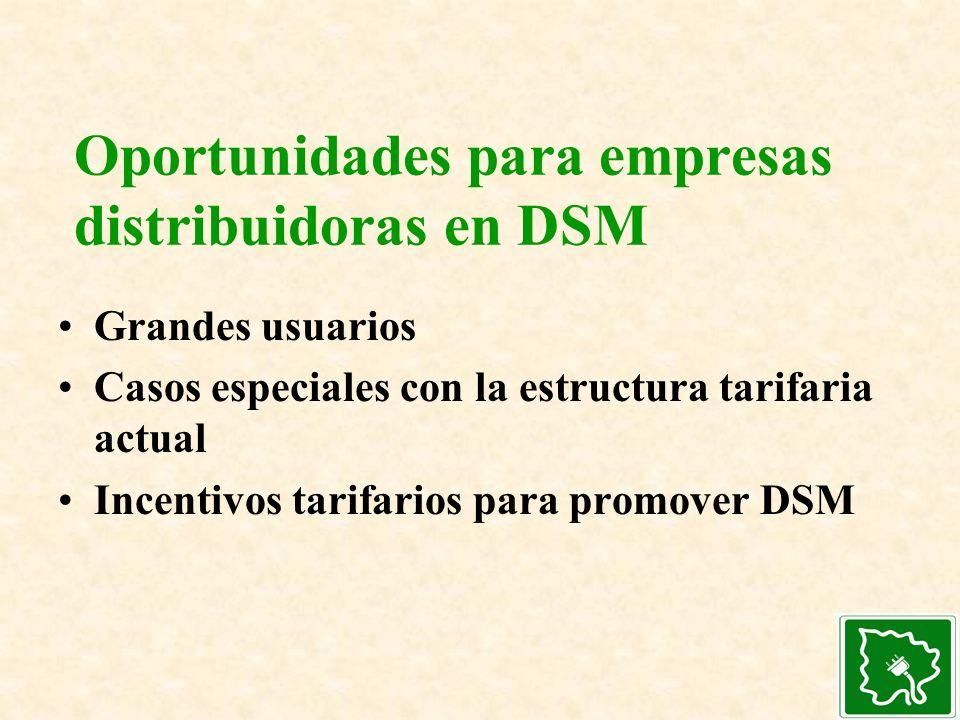 Oportunidades para empresas distribuidoras en DSM