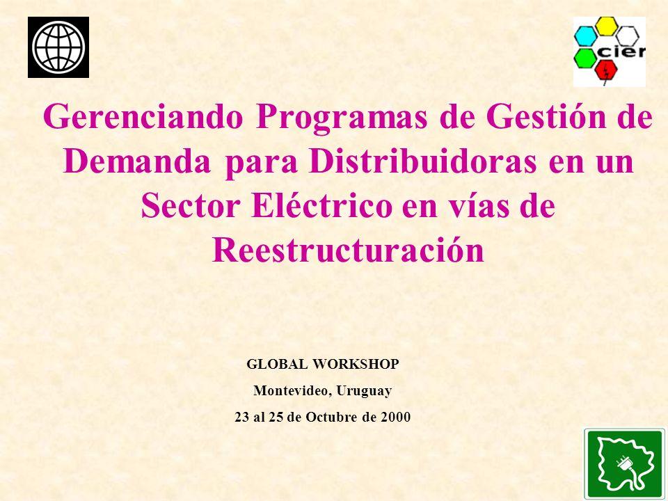 Gerenciando Programas de Gestión de Demanda para Distribuidoras en un Sector Eléctrico en vías de Reestructuración