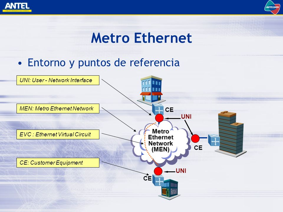 Metro Ethernet Network (MEN)