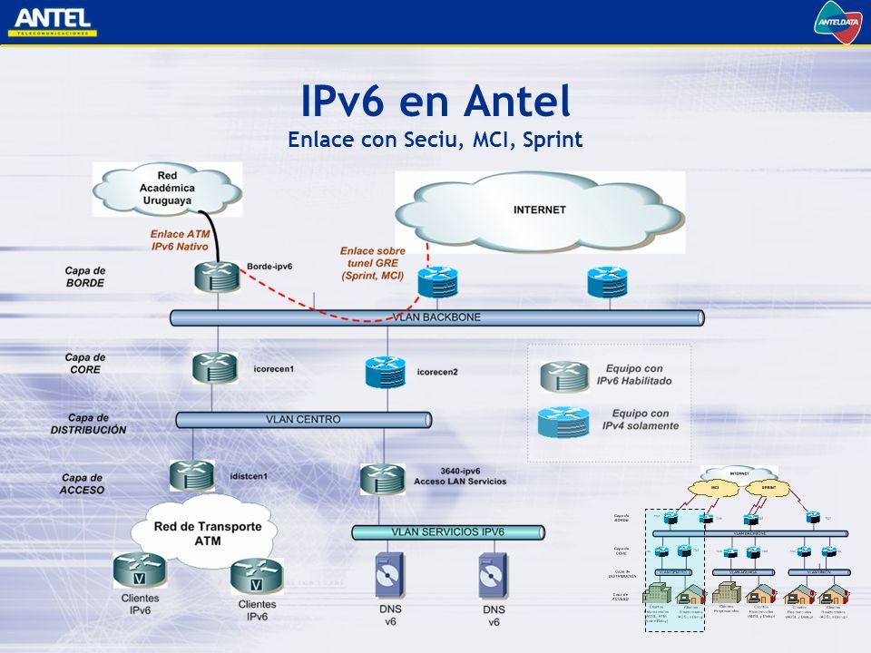 IPv6 en Antel Enlace con Seciu, MCI, Sprint