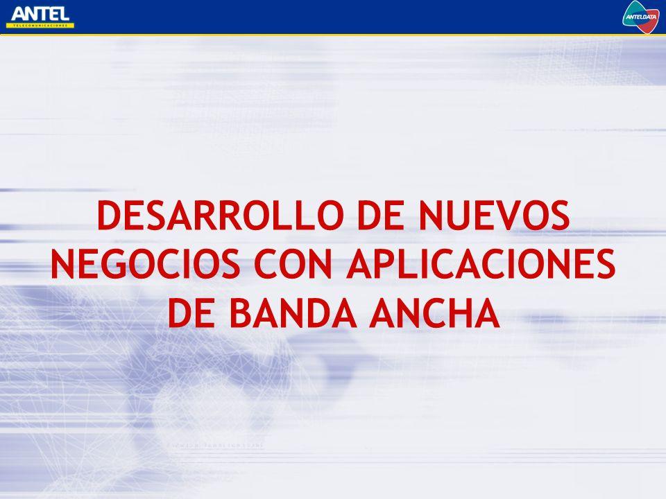 DESARROLLO DE NUEVOS NEGOCIOS CON APLICACIONES DE BANDA ANCHA