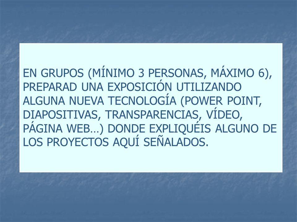 EN GRUPOS (MÍNIMO 3 PERSONAS, MÁXIMO 6), PREPARAD UNA EXPOSICIÓN UTILIZANDO ALGUNA NUEVA TECNOLOGÍA (POWER POINT, DIAPOSITIVAS, TRANSPARENCIAS, VÍDEO, PÁGINA WEB…) DONDE EXPLIQUÉIS ALGUNO DE LOS PROYECTOS AQUÍ SEÑALADOS.