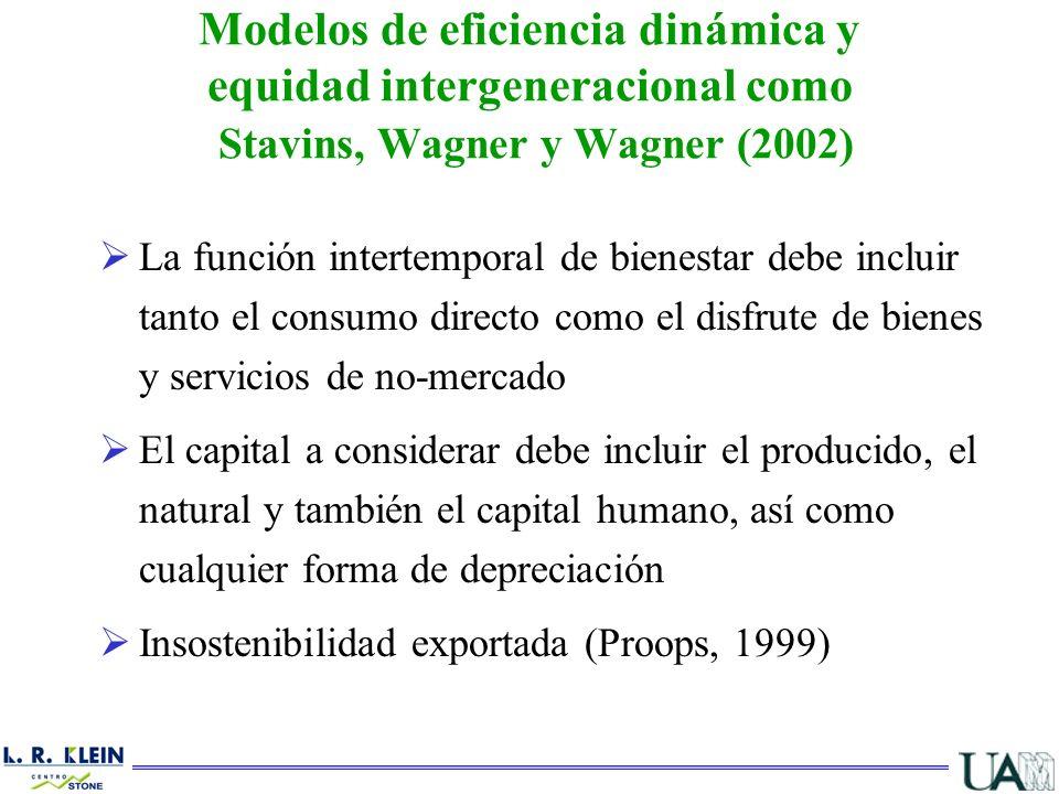 Modelos de eficiencia dinámica y equidad intergeneracional como Stavins, Wagner y Wagner (2002)