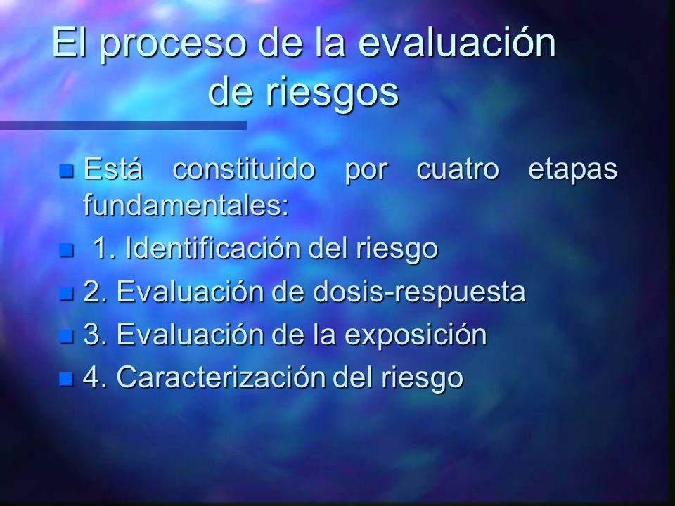 El proceso de la evaluación de riesgos