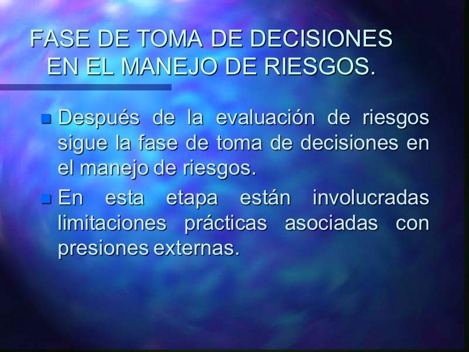 FASE DE TOMA DE DECISIONES EN EL MANEJO DE RIESGOS.