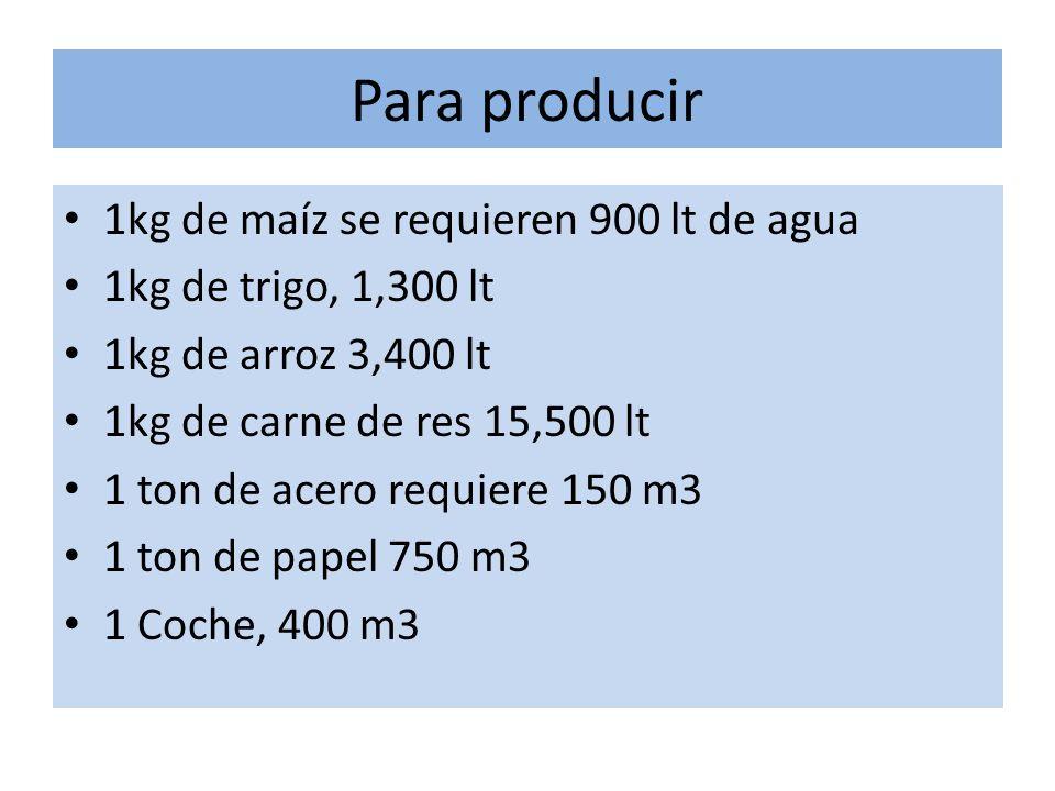 Para producir 1kg de maíz se requieren 900 lt de agua