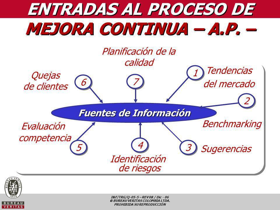 ENTRADAS AL PROCESO DE MEJORA CONTINUA – A.P. –