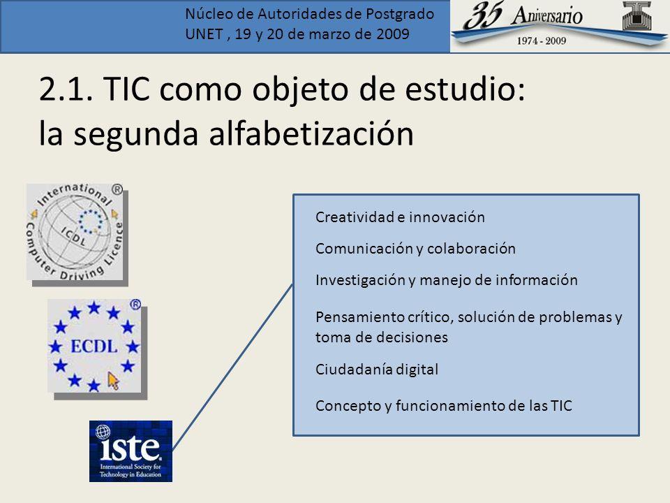 2.1. TIC como objeto de estudio: la segunda alfabetización
