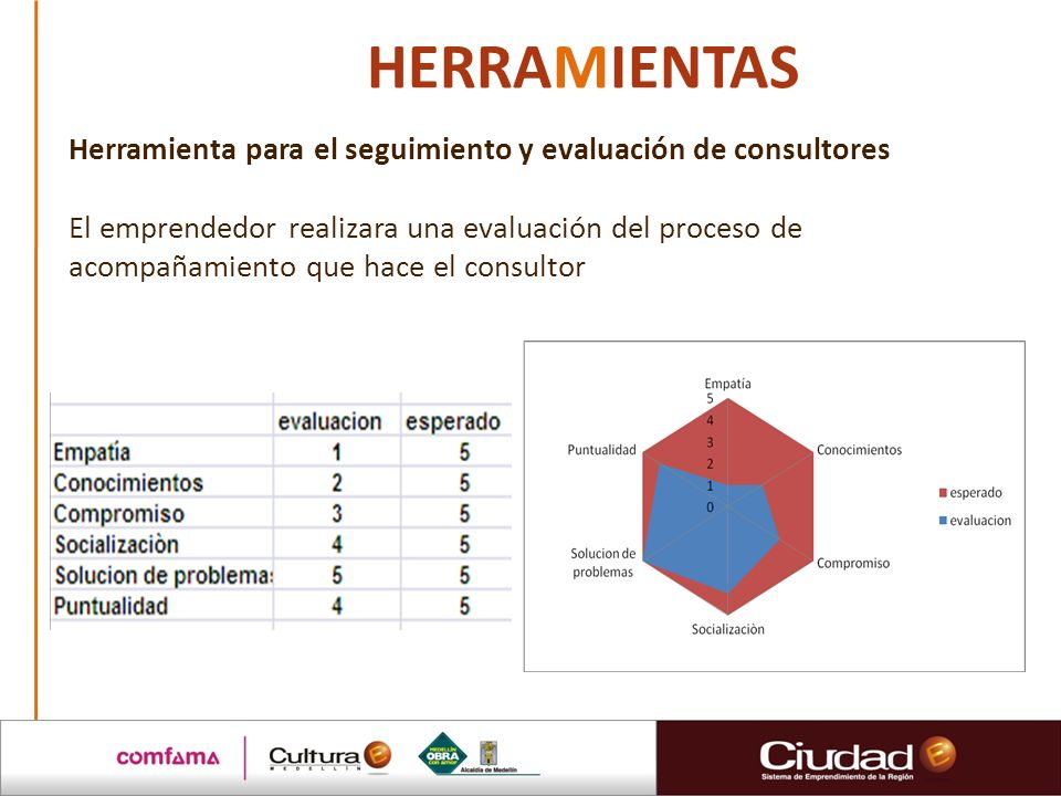 HERRAMIENTAS Herramienta para el seguimiento y evaluación de consultores.
