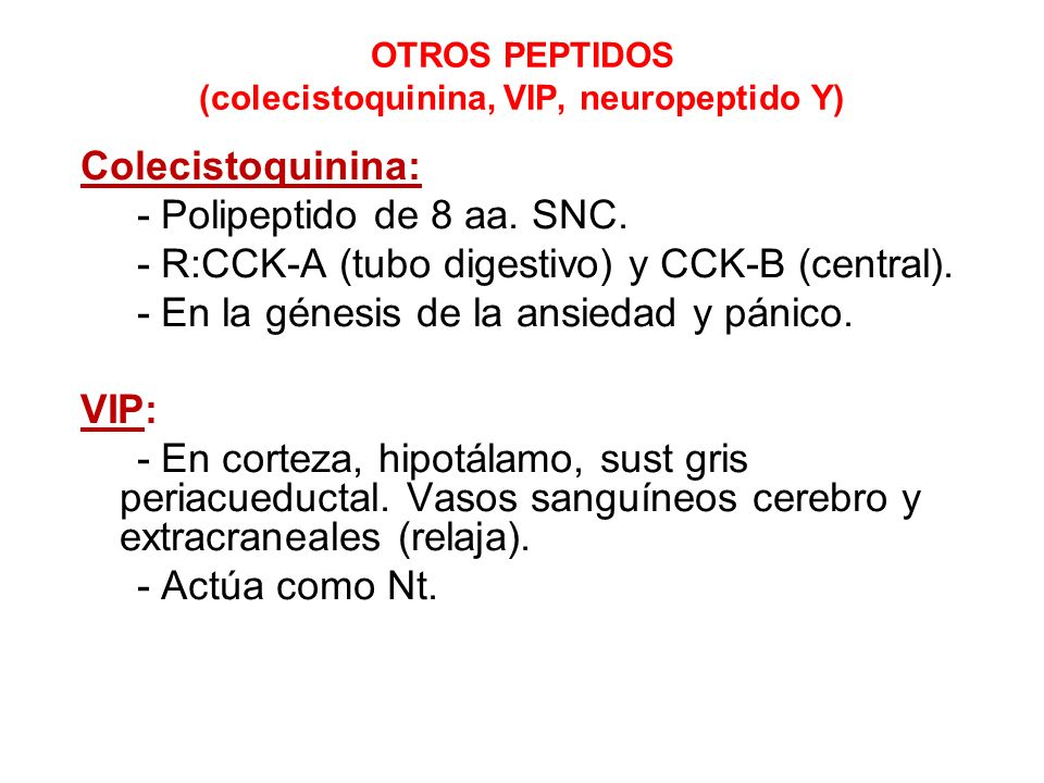 NEUROTRANSMISION CENTRAL. - ppt descargar
