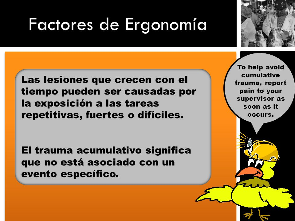 Factores de Ergonomía To help avoid cumulative trauma, report pain to your supervisor as soon as it occurs.
