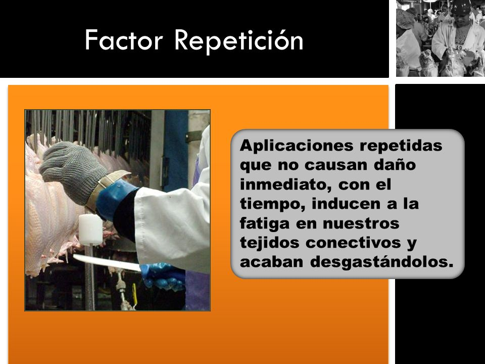 Factor Repetición