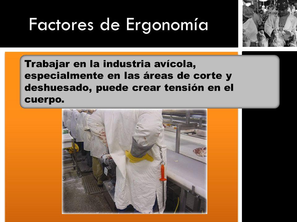 Factores de ErgonomíaTrabajar en la industria avícola, especialmente en las áreas de corte y deshuesado, puede crear tensión en el cuerpo.