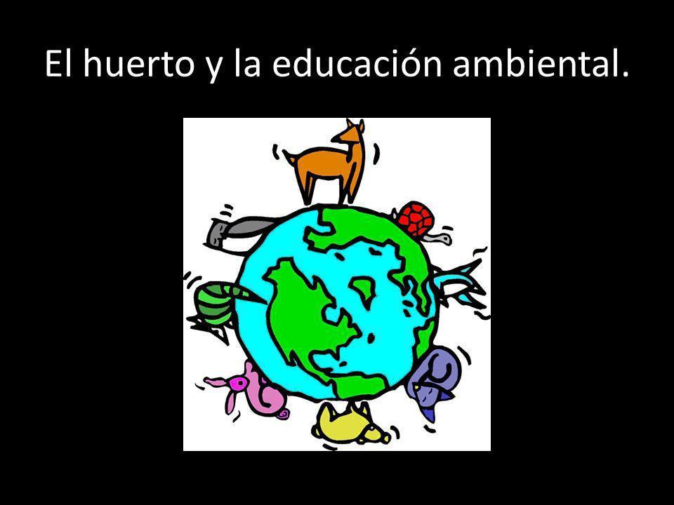 El huerto y la educación ambiental.