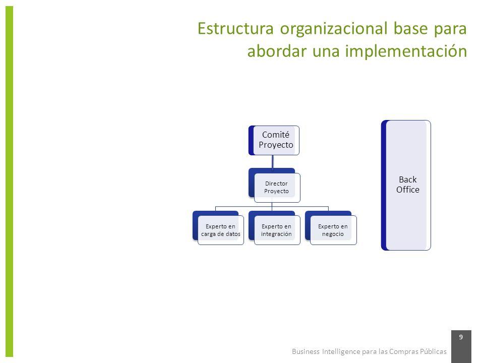 Estructura organizacional base para abordar una implementación