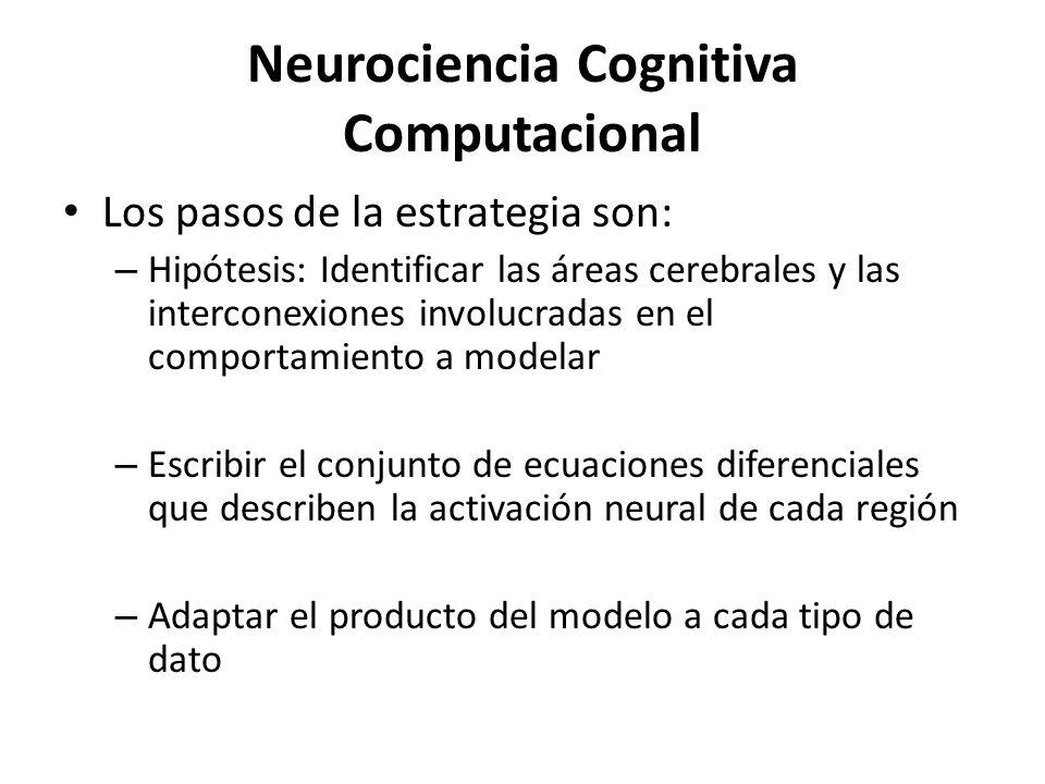 Neurociencia Cognitiva Computacional