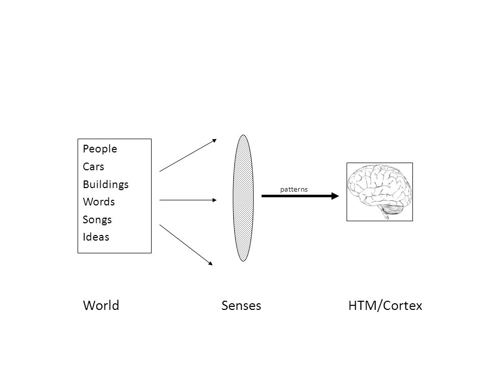 World Senses HTM/Cortex People Cars Buildings Words Songs Ideas