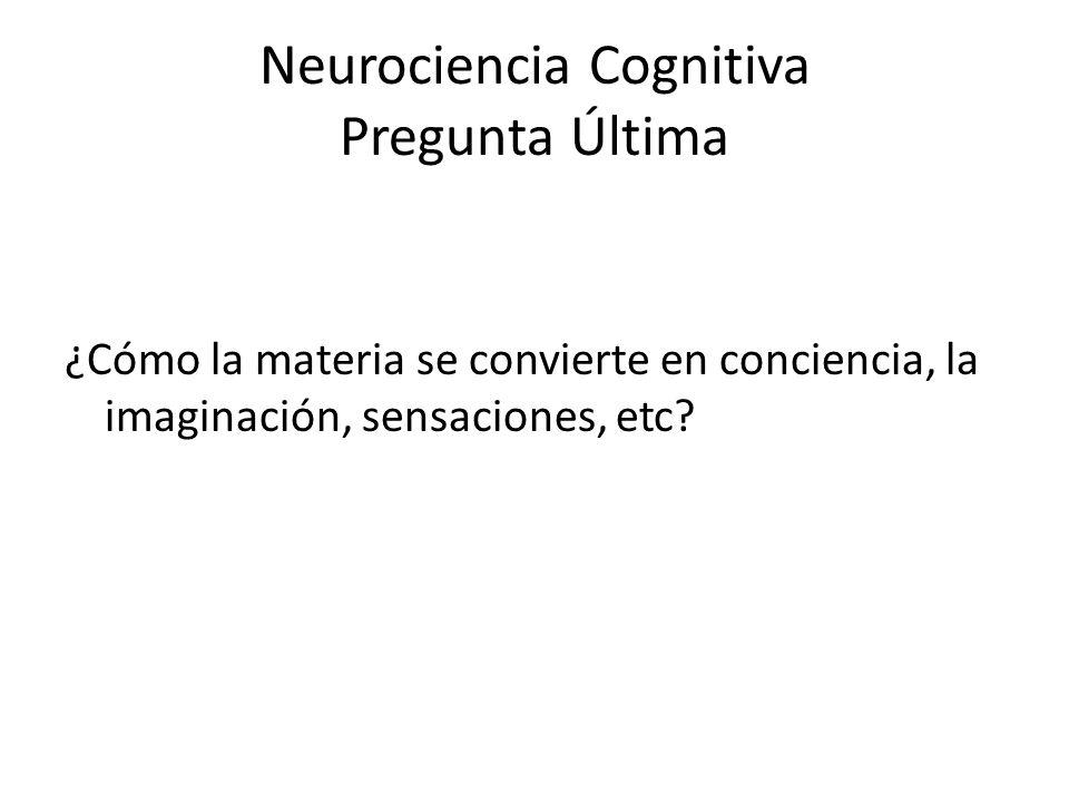 Neurociencia Cognitiva Pregunta Última