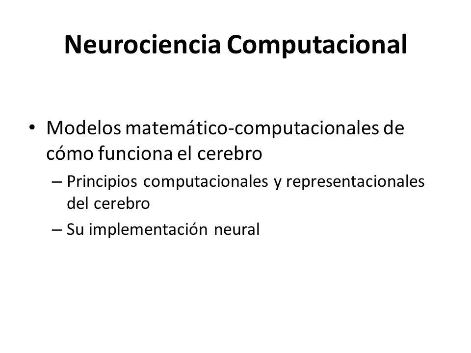 Neurociencia Computacional