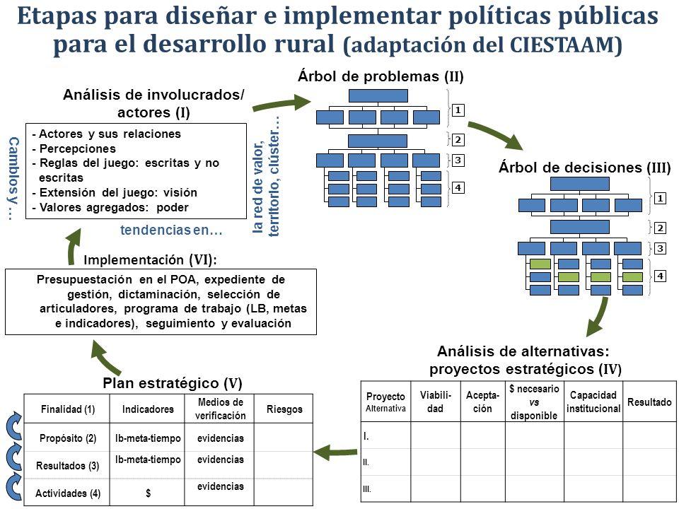 Etapas para diseñar e implementar políticas públicas para el desarrollo rural (adaptación del CIESTAAM)