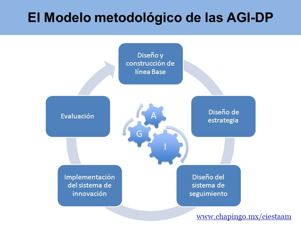 El Modelo metodológico de las AGI-DP