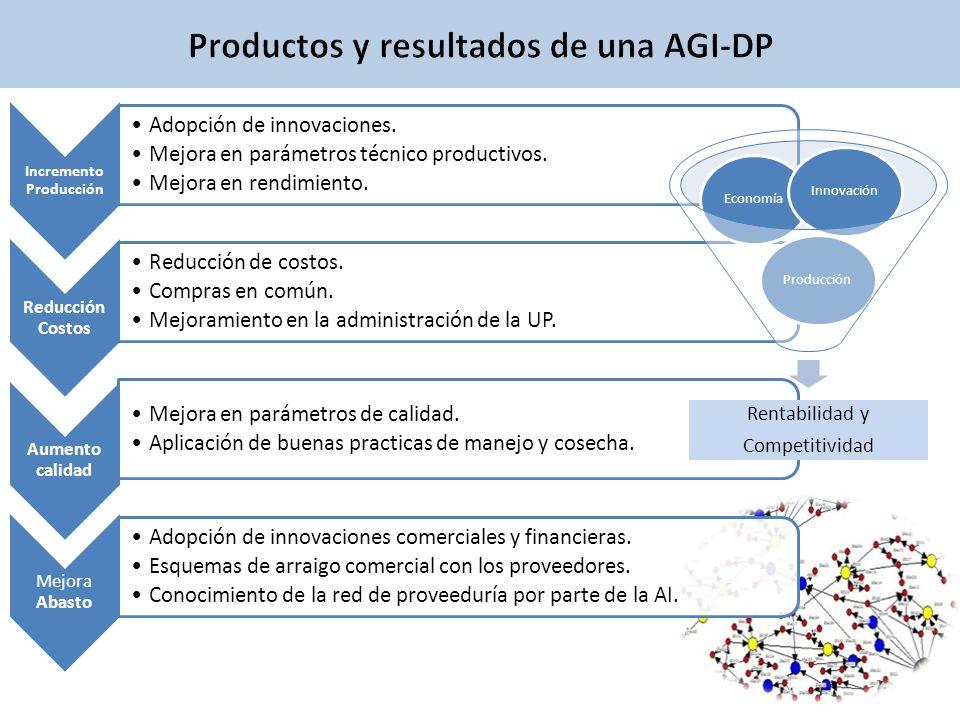 Productos y resultados de una AGI-DP