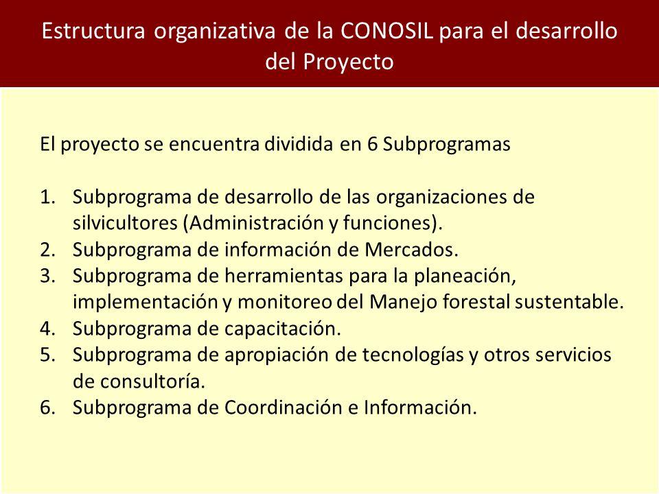 Estructura organizativa de la CONOSIL para el desarrollo del Proyecto