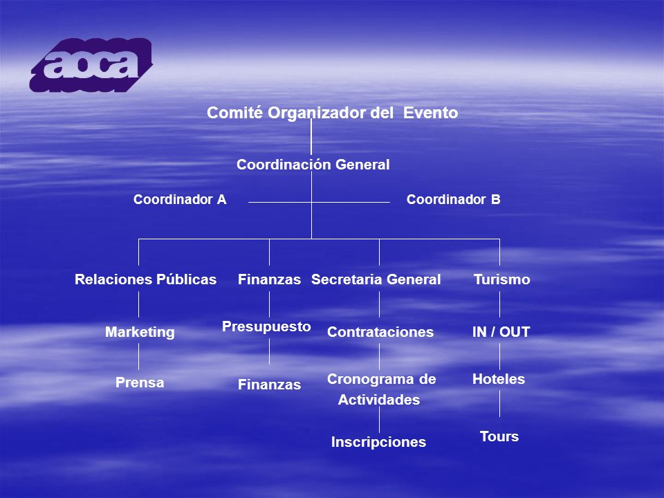 Comité Organizador del Evento