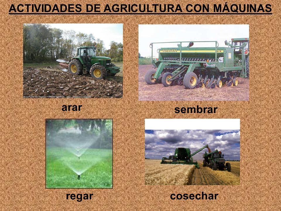 ACTIVIDADES DE AGRICULTURA CON MÁQUINAS