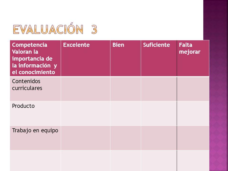 Evaluación 3 Competencia