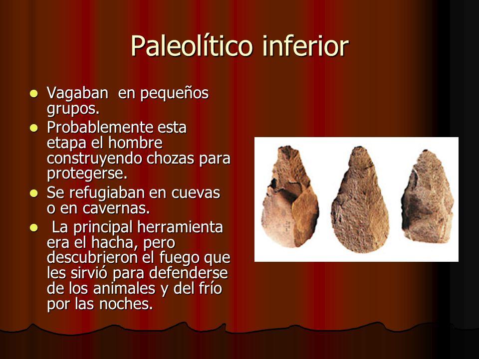 Paleolítico inferior Vagaban en pequeños grupos.